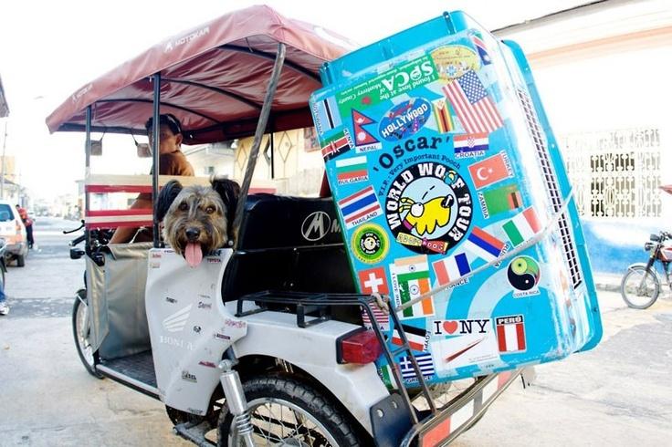 Tuk Tuk taxi ride for Mr. Oscar