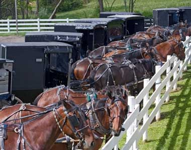 Google Image Result for http://www.amishillinois.com/images/amish/amish_parking_lot.jpg