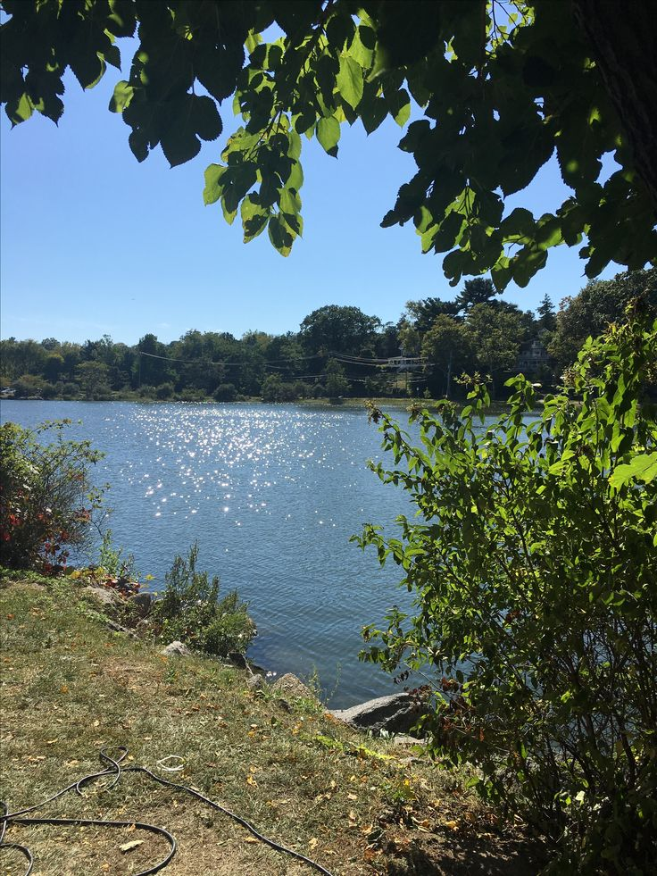September afternoon view of Greenwich Harbor from Roger Sherman Baldwin Park, Greenwich, CT. #ilovegreenwichct #realestate #realtor #livingthegoodlife #livingthedream