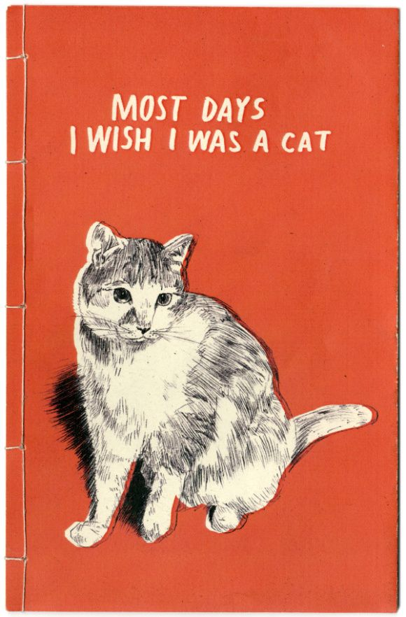 Most days I wish I was a cat. True story.: Cats, Meow, Days, Quotes, Truth, I Wish, Crazy Cat, Animal, Cat Lady