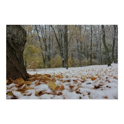 Beautiful scenery, first #snow fall in autumn 2012. Photo shot in my hometown #Amberg in Germany on #Mariahilfberg
