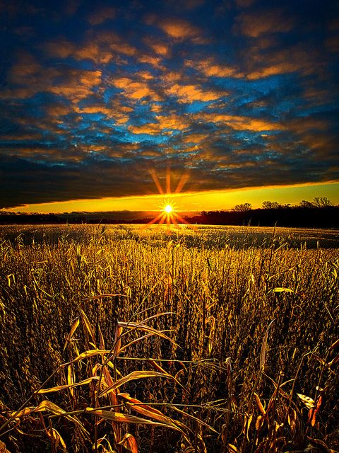 Hope  by Phil~Koch, via Flickr  Made an AUsome phone wallpaper btw.