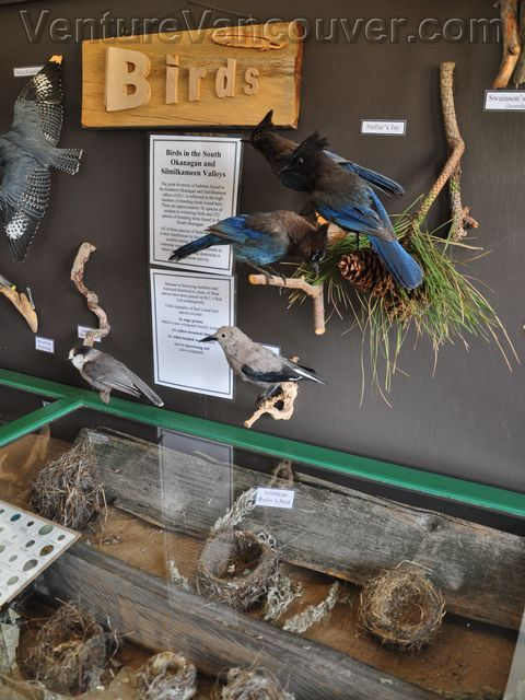 Learn about the endanger species at the Desert Centre in Osoyoos, BC #Osoyoos