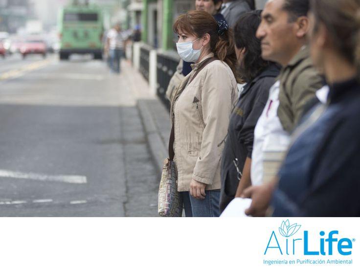 Los efectos de la contaminación. LAS MEJORES SOLUCIONES EN PURIFICACIÓN DEL AIRE. La mala calidad del aire guarda partículas que provocan desde alteraciones pulmonares, problemas cardíacos y molestias que aunque no se notan a simple vista, aparecen con el paso del tiempo. En AirLife, somos una empresa dedicada a desarrollar tecnología para purificar el aire y elevar tu salud. Te invitamos a conocer más sobre nosotros en nuestro sitio en internet www.airlifeservice.com. #airlife