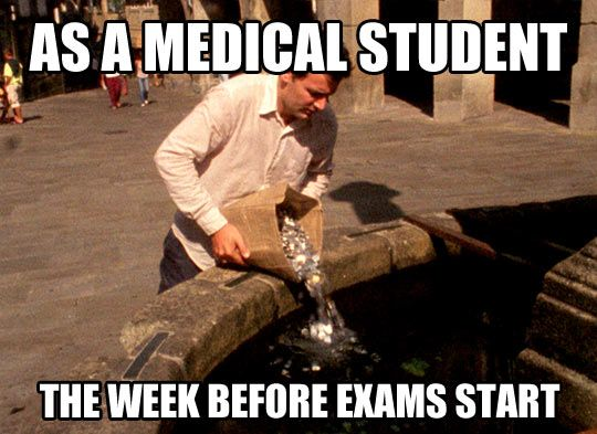 Med school, this week!!! Argh 6 exams in 12 days begins Monday! I need all the coins, prayers and lucky charms I can get!!