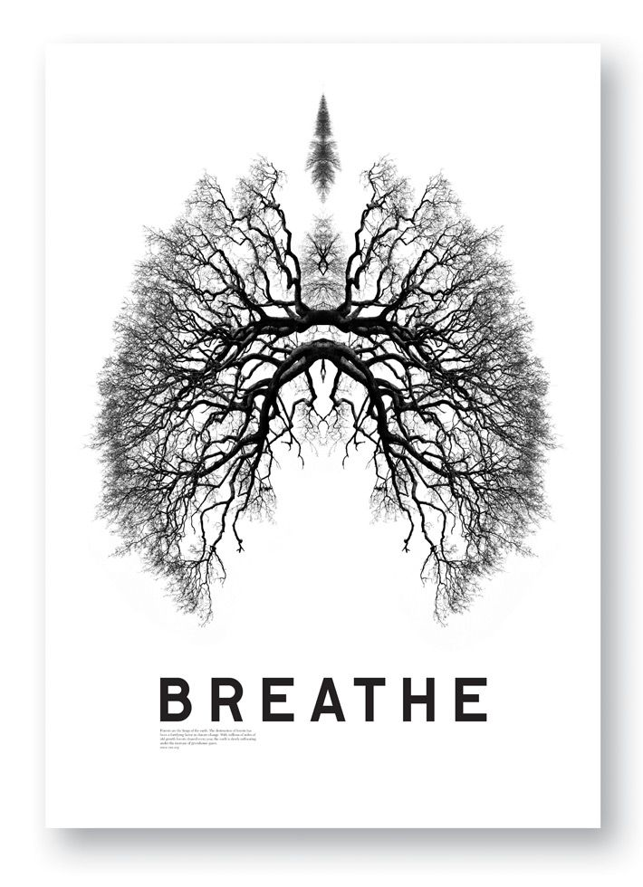 http://www.studio8design.co.uk/project/breathe-poster/  creative and has been explored deeply in to the image by using other images/ objects to create an object
