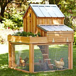 Chicken Coops & Backyard Chicken Coops | Williams-Sonoma - Very cute, but I'm sure you could DIY for far less than $1500.