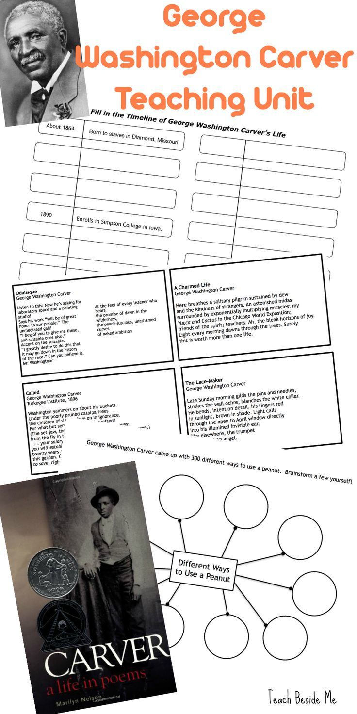 worksheet George Washington Worksheets the 25 best george washington carver ideas on pinterest teaching unit