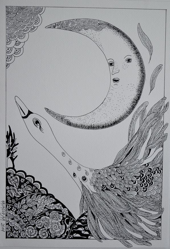 Lot na księżyc, cienkopisy