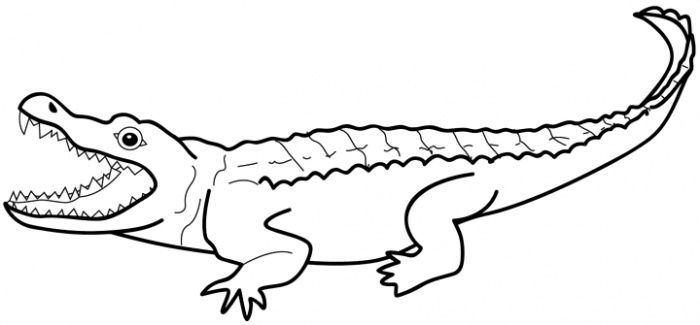 crocodile coloring pages | art- binder | pinterest | alligators ... - Alligator Clip Art Coloring Pages