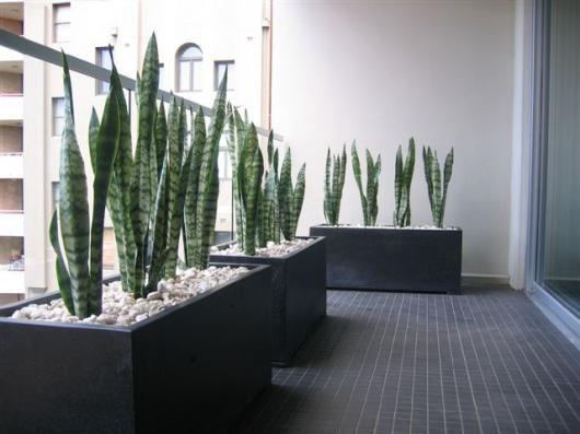Terrazzo Pots Lightweight. Oblong Planter.