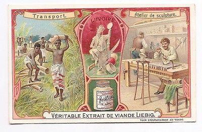L'ivoire - Défense élephant  sculpture  - Chromo Liebig - Trade Card