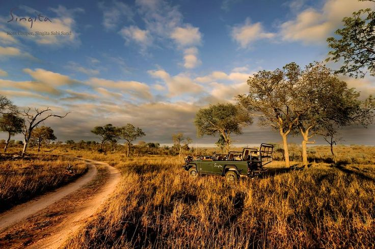 Morning perfection at Singita Sabi Sand (www.singita.com)