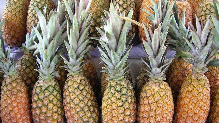 Produto é recomendado para aplicação foliar em frutas e hortaliças, e para tratamento de sementes de milho e soja