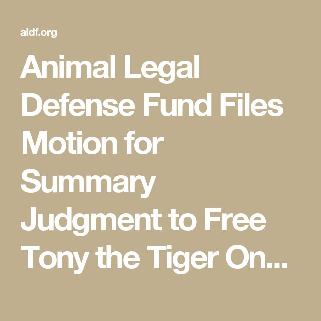 Animal Legal Defense Fund Files Motion for Summary Judgment to Free Tony the Tiger Once and for All | Animal Legal Defense Fund