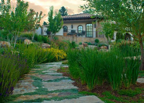 Step stone path with Thyme and Siberian Iris