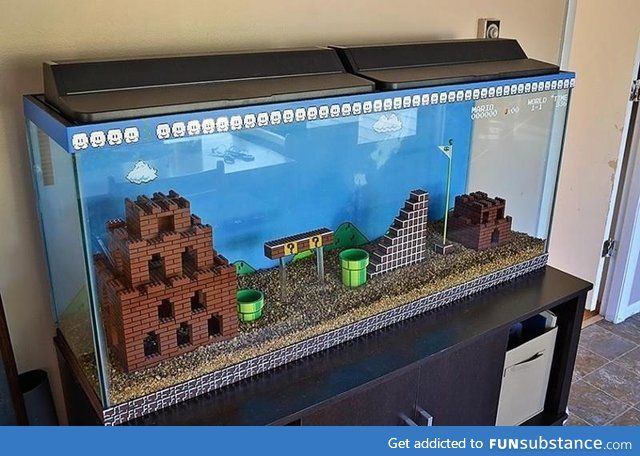Best. Fish tank. Ever