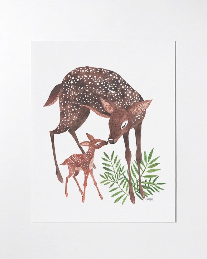 Oana Befort's Portfolio - illustration