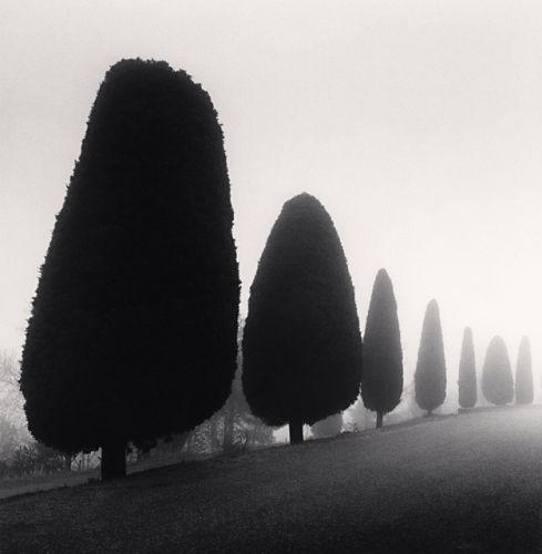 Seven Trees, Castello di Canossa, Italy (2007) by Michael Kenna