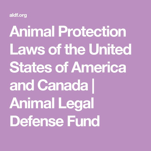 Animal Protection Laws of the United States of America and Canada | Animal Legal Defense Fund