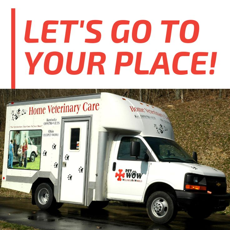 PetWow's Home Veterinary Care is the complete solution for