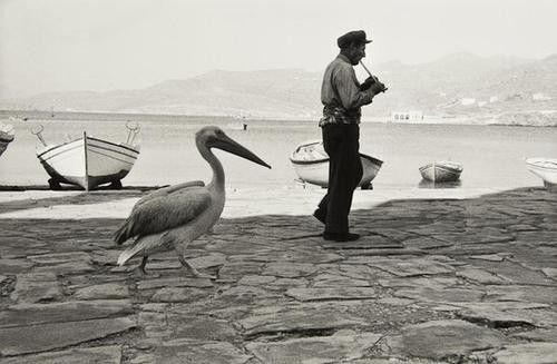 76: Rene Burri (b.1933) Le Pelican de Μύκονος, Ελλάδα: Lot 76