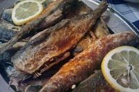 Śledź smażony - klasyka jest zawsze dobra. Ryby mogą być podawane na milion sposobów a taką prostą i zarazem genialną rybą jest śledź.