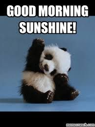 Cute Good Morning Sunshine Meme IMages