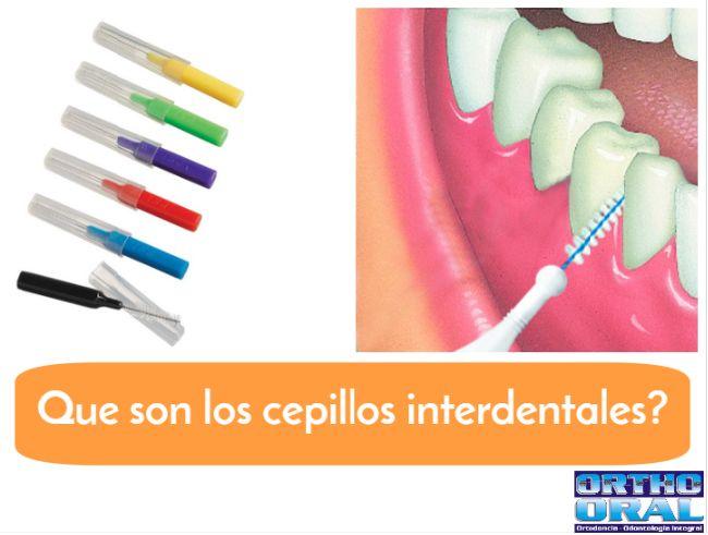 Qué son los cepillos interdentales?  El cepillo interdental, también llamado cepillo interproximal, es un cepillo de dientes con forma cilíndrica y tamaño mucho menor al de los cepillos convencionales. Pueden tener forma recta o estar acordados para facilitar su uso en las diferentes zonas de la boca.  El cepillo interdental sirve para proporcionar una correcta limpieza del llamado espacio interproximal, es decir, aquel que hay entre diente y diente.
