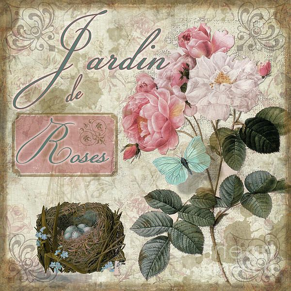 Jardin De Roses Print by Mindy Sommers