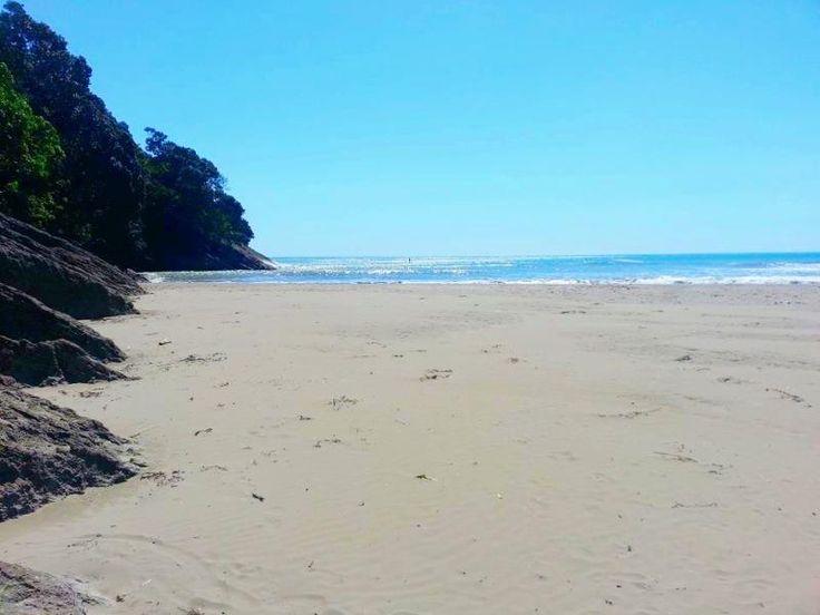 Punaruku Beach // Te Araroa