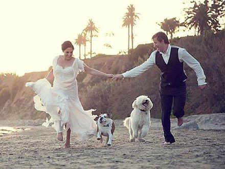 Saw this pic (People Magazine) from Ricki Lake's wedding photo.  Love the wedding beach fun type of pic.