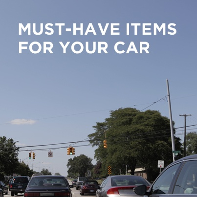 108 best Car Organization, Tips & Ideas images on Pinterest | Car stuff, Car repair and Auto maintenance