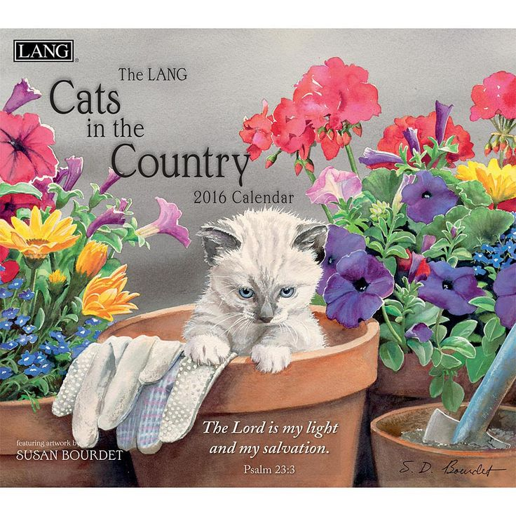 Susan Bourdet Cats in the Country Christian 2016 Wall Calendar ...