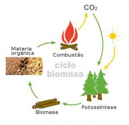 Energia da biomassa - Novas Dicas