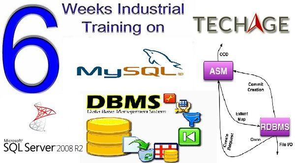 TechAge Academy Provide Summer Training Internship Program on SQL Server 2008,MY SQL,DBMS,RDBMD in Noida, Delhi, Faridabad.Call for more details:- +91-9212063532,+919212043532 Visit: http://www.techageacademy.com/courses/sql-training/
