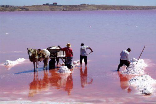 Озеро Масазир - это соленое озеро в районе Карадага, недалеко от Баку, Азербайджан. Общая площадь озера составляет 10 квадратных километров. В ионном составе воды содержатся большие объемы хлорида и сульфата.   Источник: http://www.bugaga.ru/interesting/1146735826-8-samyh-potryasayuschih-v-mire-rozovyh-ozer.html#ixzz3PpwfhHHs