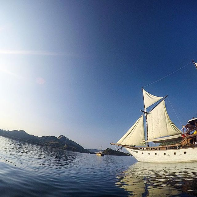 Smell the sea, feel the sky as we are heading to the sun!  #exploreflores #exploreindonesia #instanusantara #flores #labuanbajo #dive #diving #divekomodo #ship #scuba #snorkeling #scubadiving #diveindonesia #flores #freedive #komodo #komodonationalpark #liveaboard #phinisi #boat #boatlife #cruise #underwater #trekking #holiday #travel #travelgram #traveling #indonesia #traditionalship