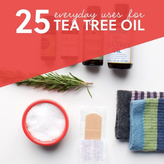 Tea tree oil is one of the most extensively researched essential oils, and one of the most backed by the findings and conclusions discovered from the studies done on it. It is produced from a shrub like tree by the name of Melaleuca alternifolia, which is found along streams and in swampy areas...