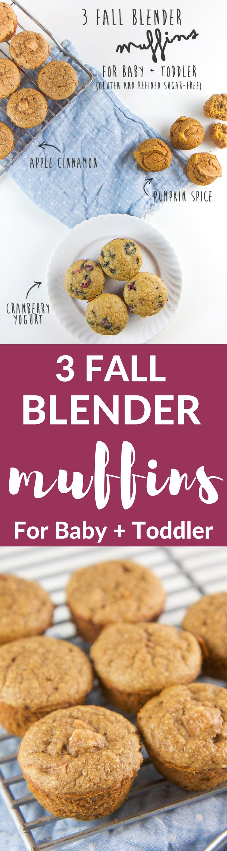 3 delicious muffins for baby and toddler that are made in the blender!