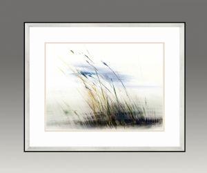 Grasses. Water Series