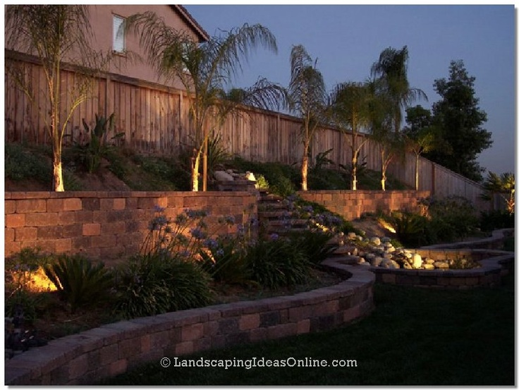 Retaining Walls Palm Trees And Palms On Pinterest