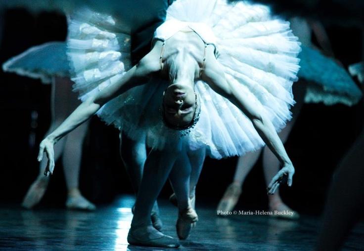 Beatrice Knop, Staatlichen Ballettschule Berlin - Ballet, балет, Ballerina, Балерина, Dancer, Danse, Танцуйте, Dancing, Russian Ballet