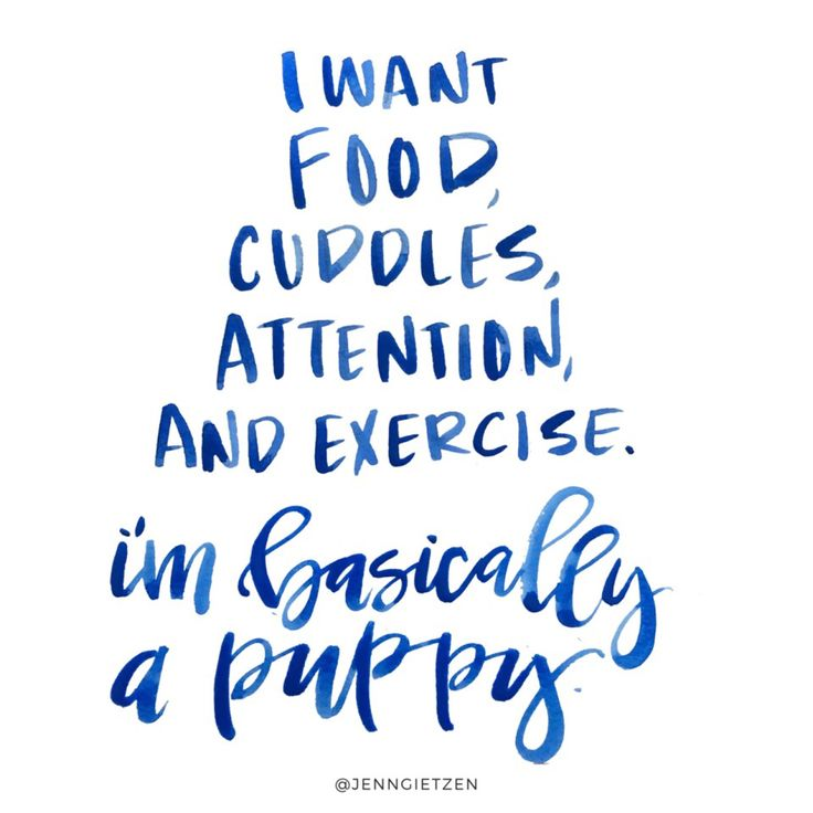 "Love this silly quote that totally describes the personality. ""I want food, cuddles, attention, and exercise. I'm basically a puppy."""