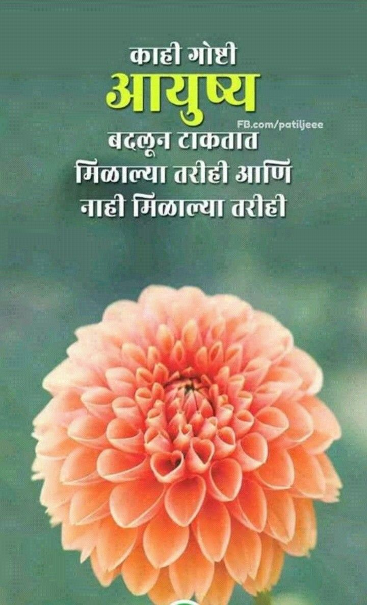 Pin By Santosh Patil On Morning Morning Quotes Good Morning Messages Good Morning Quotes