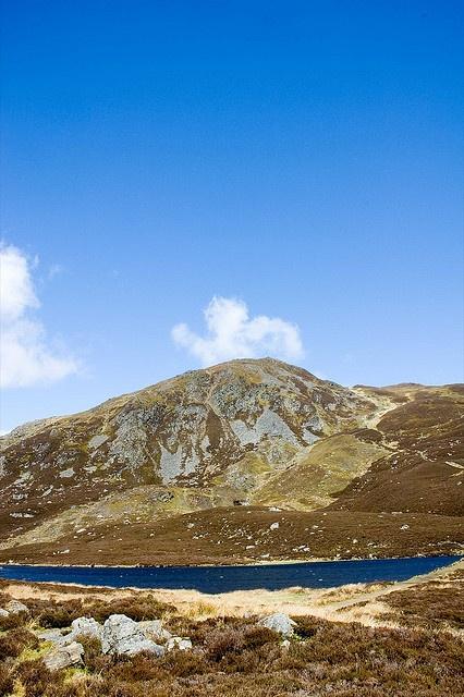 Ben Vrackie near Pitlochry in #Scotland