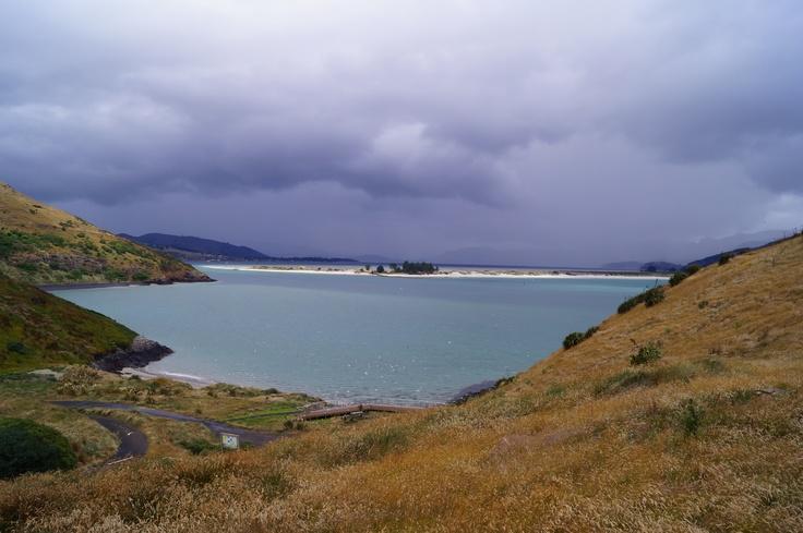 Aramoana from Taiaroa Head