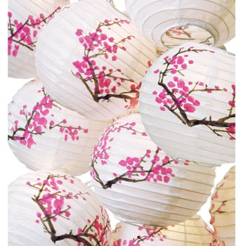 sooo cute I think this is it :): Blossom Lanterns, Paper Lanterns, Wedding Ideas, Weddings, Cherries, Party Ideas, Cherry Blossoms