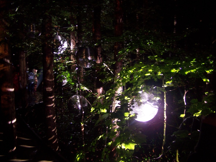 More forest disco lights