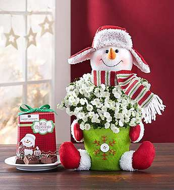 48 Best Christmas Florals Images On Pinterest Christmas